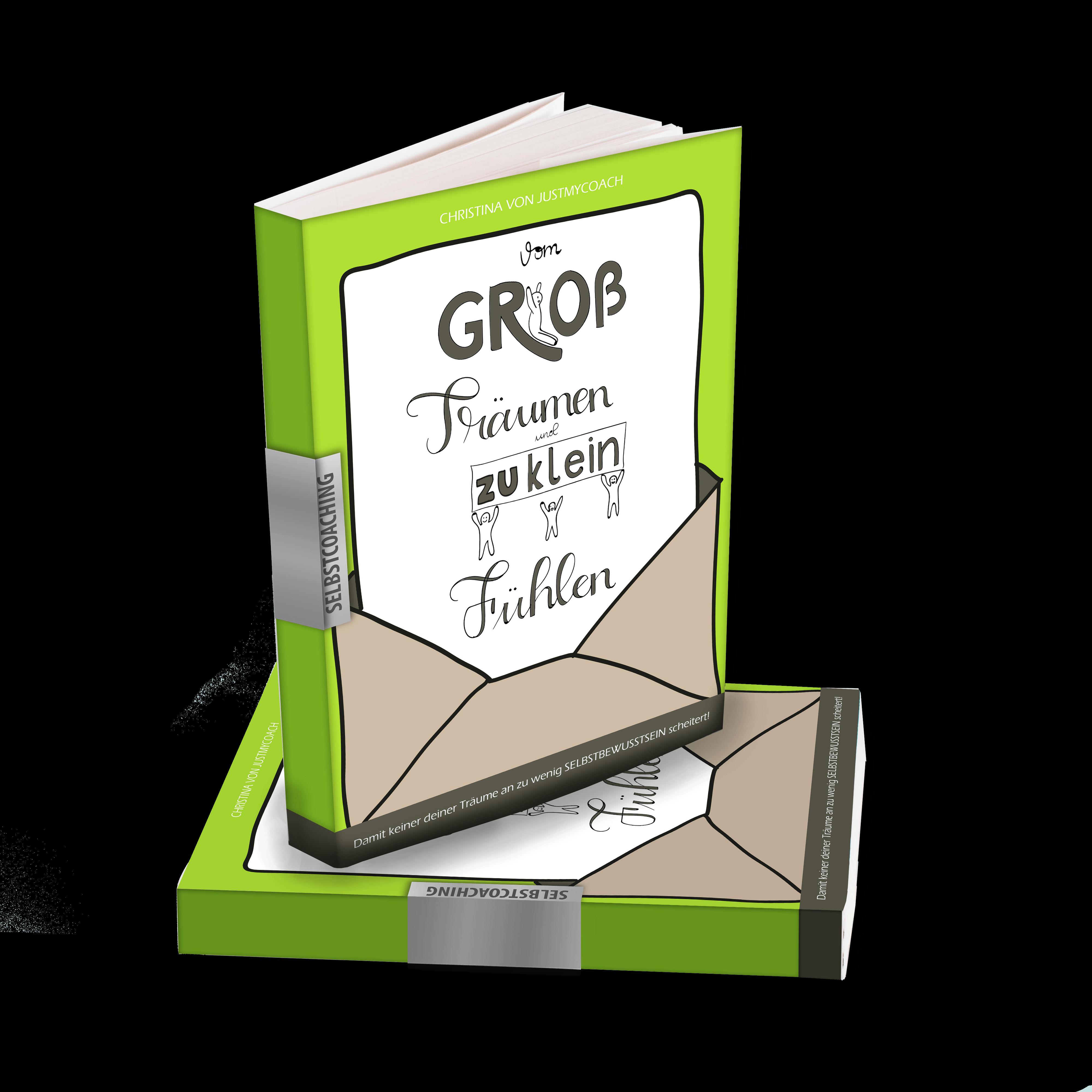 Vom groß Träumen und zu klein fühlen - Buch für hochsensible Scanner
