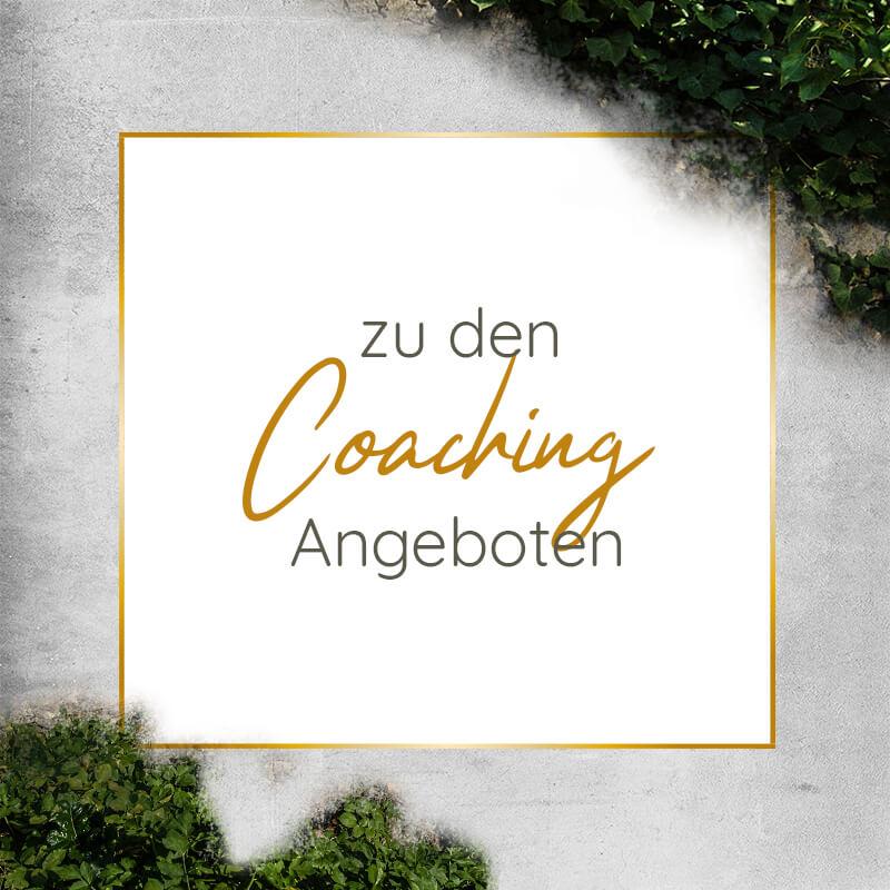 Hochsensibilität Coaching Scanner Persönlichkeit Coaching